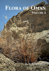 Flora of the Sultanate of Oman, vol. 4